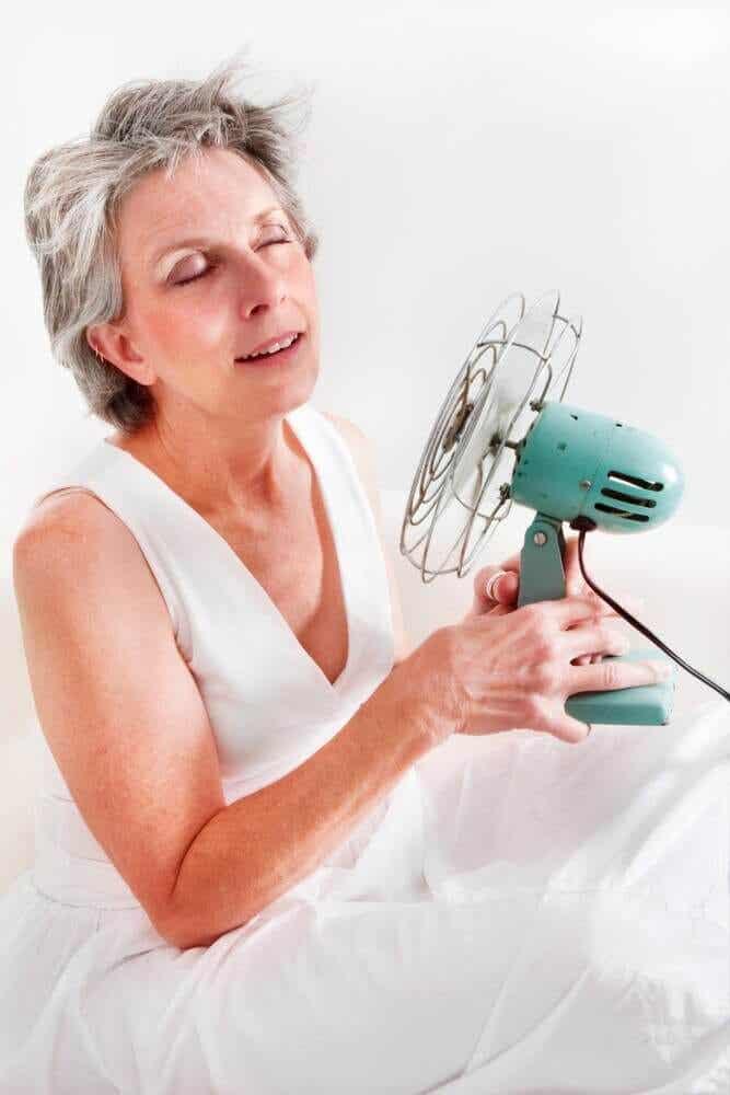 Remédios naturais eficazes para tratar os sintomas da menopausa