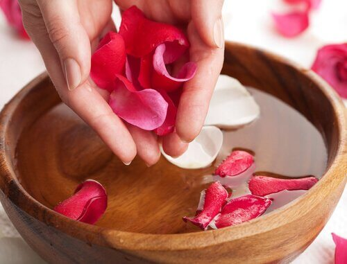 Tônico natural de água de rosas