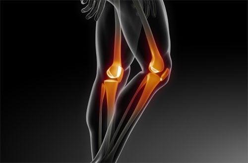 Ossos com osteoporose