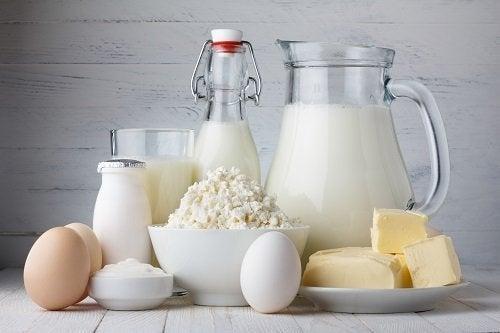 Lacticínios ajudam a prevenir a osteoporose