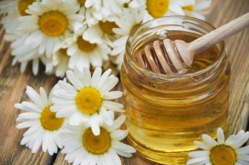 Camomila e mel para a enxaqueca