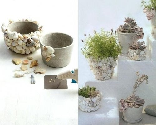 Vasos decorativos com pedras e conchas