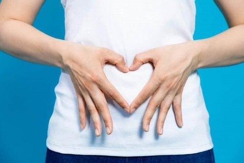 Dieta para evitar a disbiose intestinal