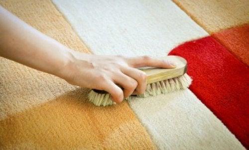 Vinagre branco e escova para remover as manchas de tapetes maisdifíceis