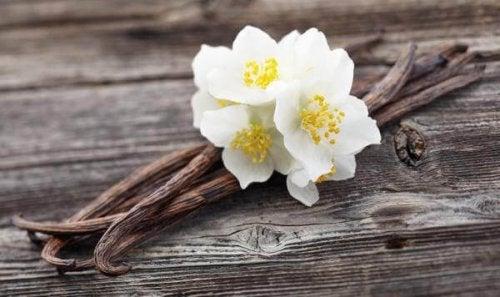 O extrato de baunilha ajuda a combater odores ruins na lixeira