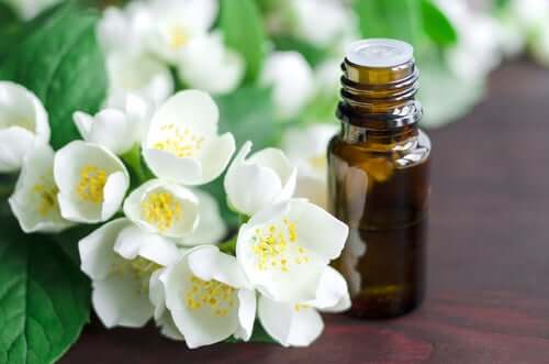 A glicerina vegetal é outro remédio natural para o tratamento da língua branca