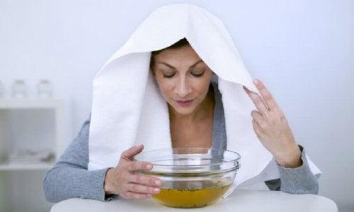 Inalação com vapor de eucalipto é um dos remédios naturais efetivos contra os sintomas da blastomicose