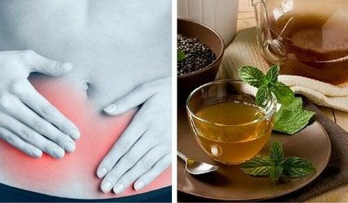 Chã de boldo ajuda a combater as doenças urinárias