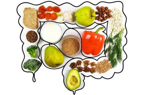Limpar o cólon: dieta de limpeza