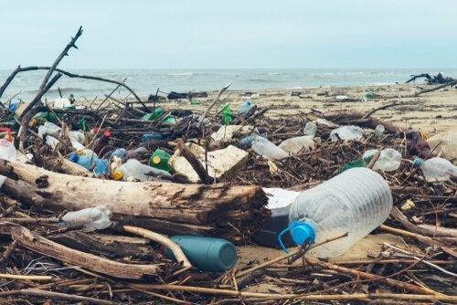 Não jogue plástico no mar