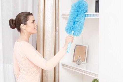 5 formas de purificar o ar da sua casa naturalmente