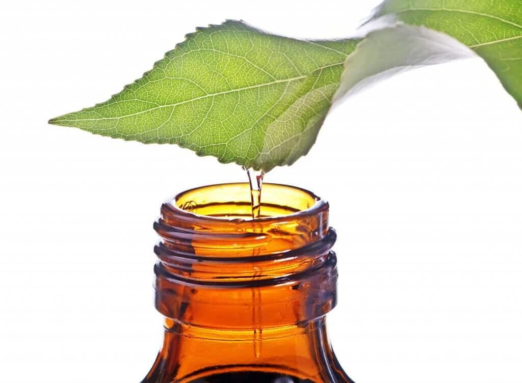 Óleo de hortelã ajuda a combater a congestão nasal