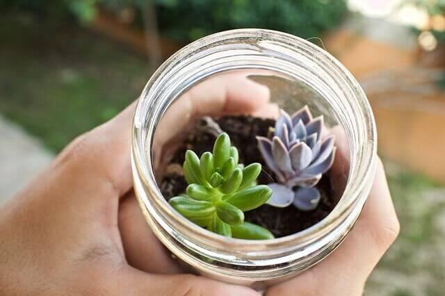 ideias para decorar um jardim pequeno