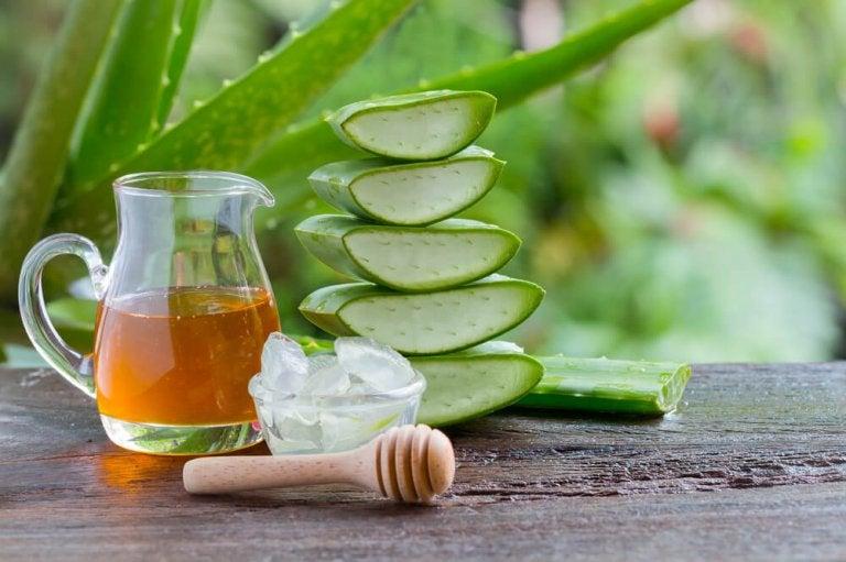 Teste este remédio de babosa e mel para problemas estomacais