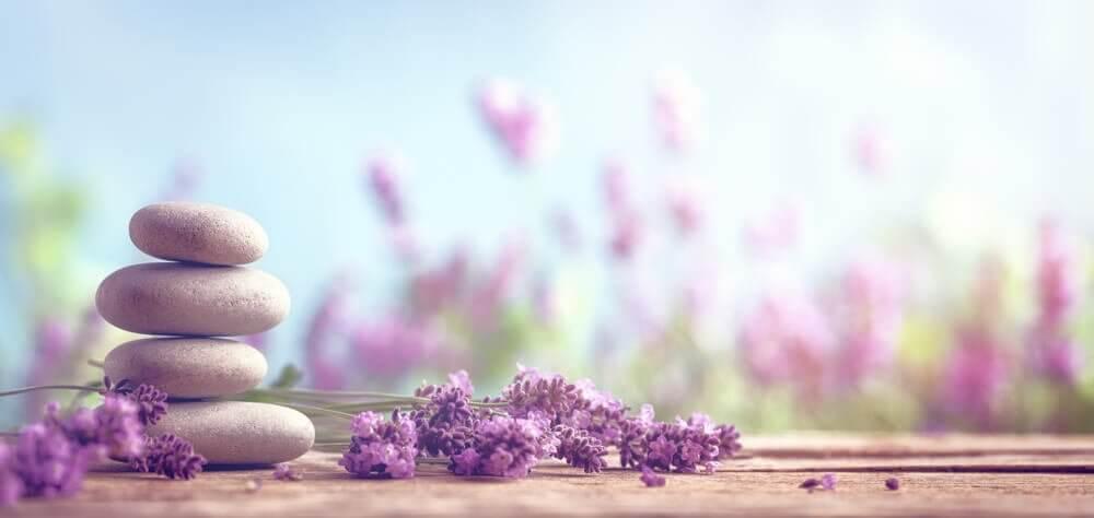7 remédios simples à base de ervas para dizer adeus ao estresse