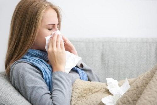 4 remédios antigripais que você pode preparar com plantas