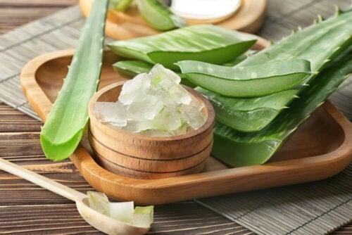 Babosa, mel e azeite de oliva para aliviar a tosse crônica