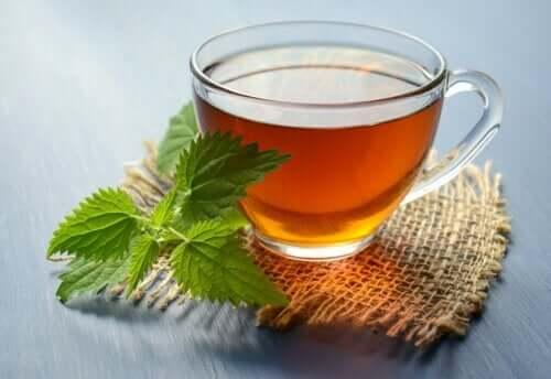 5 bebidas à base de ervas para prevenir pedras nos rins