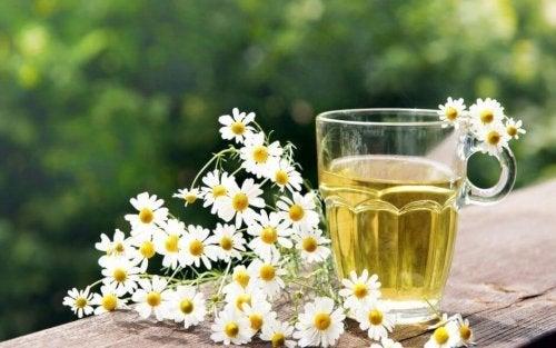 Chá de camomila para evitar a cárie