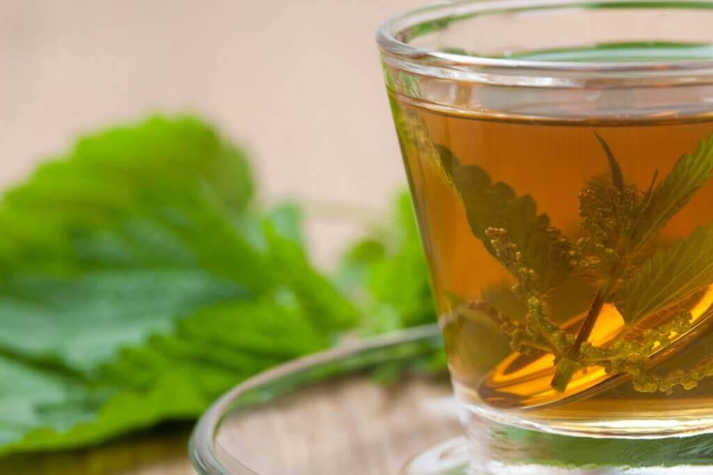 Chá de folhas de urtiga para prevenir pedras nos rins.