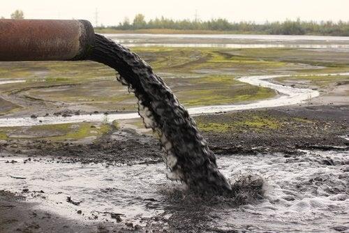 Efeitos da poluição na água