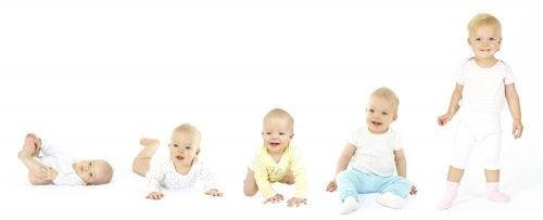 Desenvolvimento ósseo dos bebês a diferentes idades