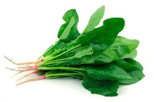 Espinafres ajudam a combater o cansaço crônico