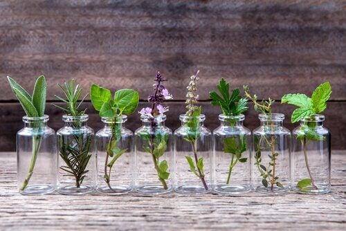 Como fazer vasos com recipientes reciclados