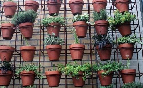 5 maneiras criativas de ter plantas em casa: jardins verticais