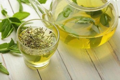 Chá verde para perder gordura abdominal