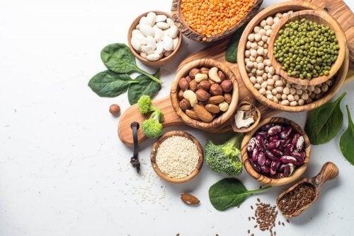 Qual é a qualidade da proteína vegetal?