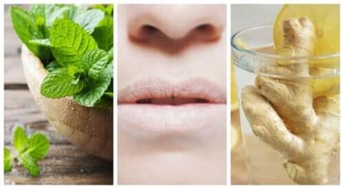 Combata a boca seca com 5 remédios naturais