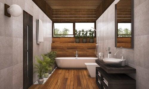 Plantas para o banheiro que você deve ter