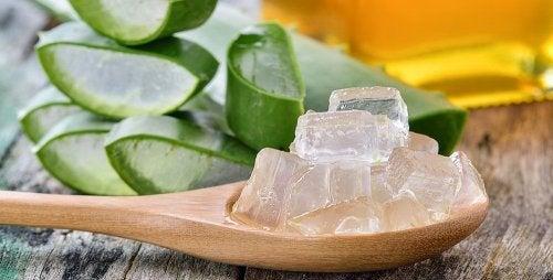 Bolhas na pele: aplique gel de aloe vera