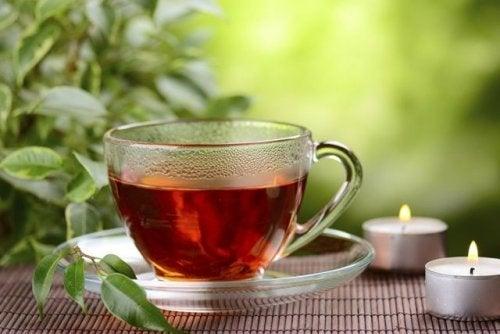 Infusões caseiras de chá vermelho