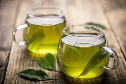Infusões caseiras de chá verde