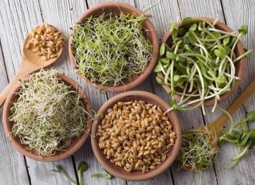 Ingredientes para a salada detox