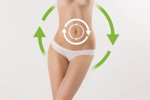 Iogurte desnatado acelera o metabolismo
