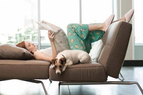 Cachorros trazem paz em casa