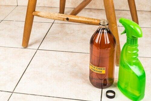 Vinagre para eliminar as manchas de mofo