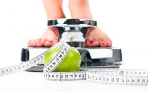 A dieta da zona ajuda a perder peso