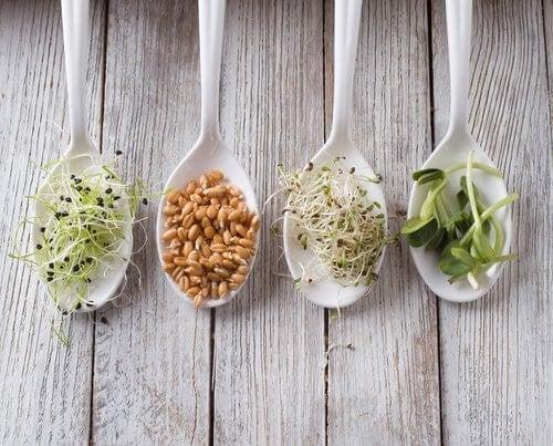 Mandamentos da nutrição saudável: comer pequenas porções