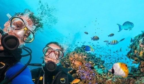 Prenda a respiração ao nadar debaixo d'água