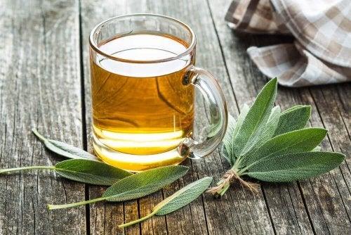 Remédio de manjericão e sálvia para depurar os rins