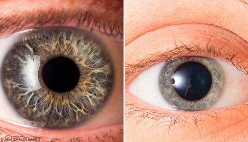 Atenção aos sinais na pupila de que uma pessoa que mente