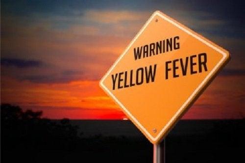 Febre amarela. Como aliviar os sintomas