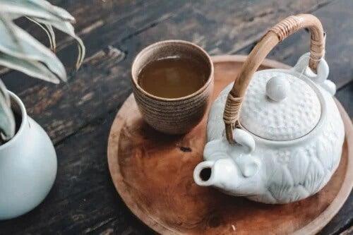 6 remédios à base de ervas para ajudar a conter as náuseas