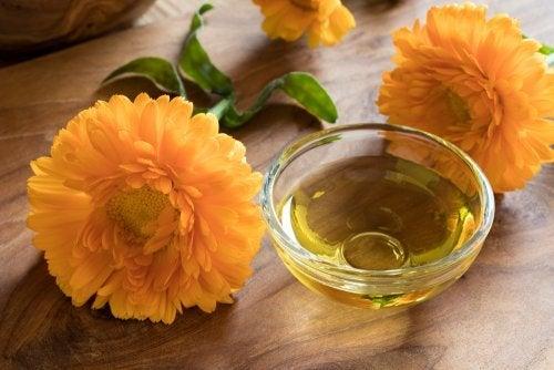 Chá de calêndula e manose para as infecções