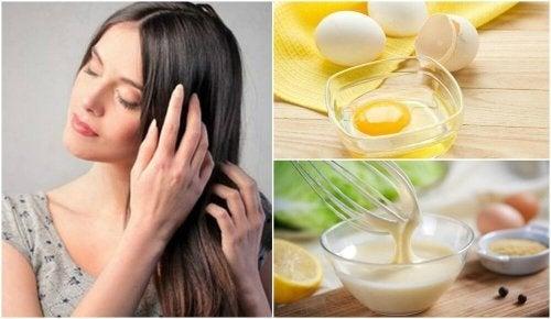 Mistura de ovo, leite e água de rosas para tratar os cabelos secos