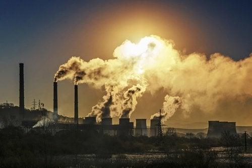 Não acenda velas aromáticas ou fume para evitar a poluição do ar